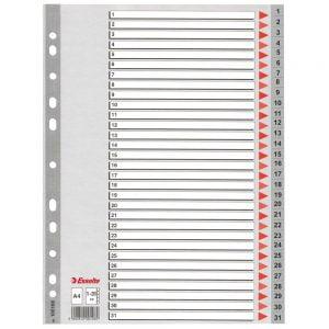 Poza la Index din plastic Esselte